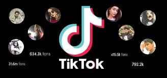 Probabilities and Possibilities to earn money through Tik Tok